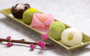 Картинка ветка, тарелка, сладости, Japan, wagashi