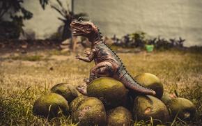 Картинка avocado, t-rex, vegeterian