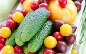 Обои широкоформатные, овощ, широкоэкранные, фон, widescreen, огуречик, HD wallpapers, обои, fullscreen, огурцы, еда, полноэкранные, background, wallpaper, ...
