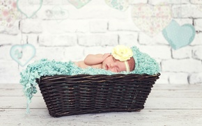 Картинка цветок, корзина, ребенок, малыш, спит, девочка, младенец