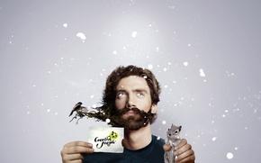 Картинка бурундук, борода, creative people