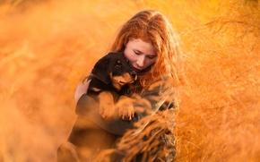 Картинка природа, собака, девочка