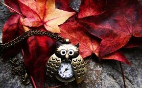 Картинка осень, листья, сова, часы, желтые, красные, цепочка, подвеска, бордовые, багровые