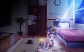 Картинка цветок, девушка, свет, ночь, темнота, комната, чай, часы, книги, кровать, аниме, день, торт, полка, рождения, …