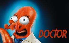 Обои Зойдберг, Futurama, Доктор, Футурама, Zoidberg