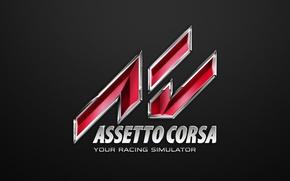 Картинка logo, carbon, race, corsa, simulator, assetto