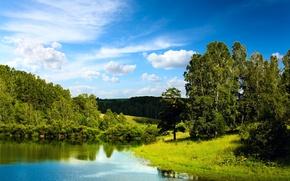 Обои лес, небо, вода, облака, деревья, озеро, отражение, голубое, Landscape, blue sky, Mirror lake