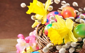 Картинка цветы, Eggs, Пасха, яйца, Easter, Daffodils, нарциссы, Spring, верба, корзина, весна