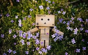 Обои трава, природа, коробка, danbo, цветки