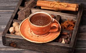 Обои горячий, шоколад, чашка, напиток, орехи, корица, блюдце, пряности, анис