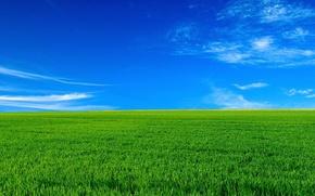 Обои небо, горизонт, поле, пейзаж