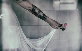 Картинка цветок, фон, рука