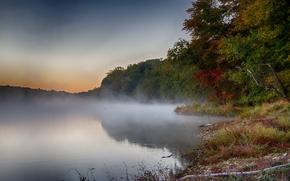 Картинка осень, лес, деревья, туман, озеро