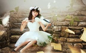 Картинка кошка, девушка, музыка, скрипка