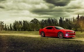 Картинка деревья, красный, Chevrolet, Camaro, red, шевроле, мускул кар, muscle car, камаро