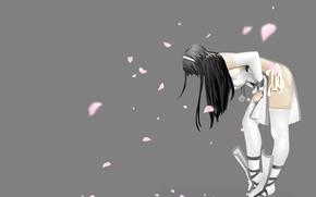 Картинка девушка, лепестки, сакура, поправляет