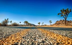 Картинка road, horizon, Joshua Tree National Park