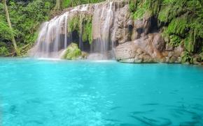Картинка лес, деревья, природа, река, водопад, голубая вода