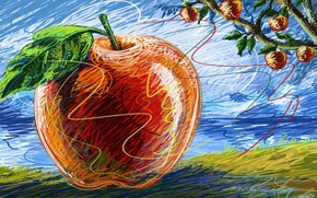 Картинка макро, дерево, рисунок, яблоко, фрукты, яблоня