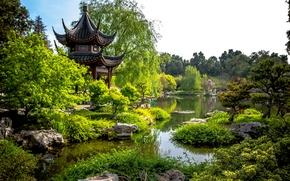 Картинка зелень, деревья, пруд, парк, камни, Калифорния, пагода, США, кусты, San Marino, Huntington Botanical Gardens