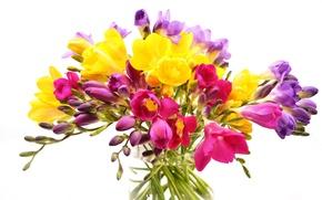 Картинка цветы, букет, ваза, фрезия, белый фон