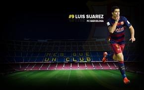Картинка wallpaper, sport, football, Camp Nou, player, FC Barcelona, Luis Suarez, Mes Que un Club, More …