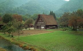 Обои дом, поле, лес