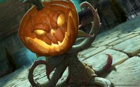 Картинка Конь, World of Warcraft, Тыквовин, тыква.растение