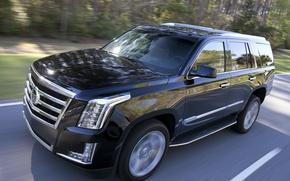 Картинка Cadillac, Escalade, '2014