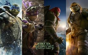 Картинка TMNT, Raphael, Leonardo, Donatello, Донателло, Леонардо, Микеланджело, Teenage Mutant Ninja Turtles, Michelangelo, Черепашки Ниндзя, Рафаель