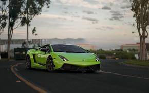 Картинка Lamborghini, Superleggera, Gallardo, Green