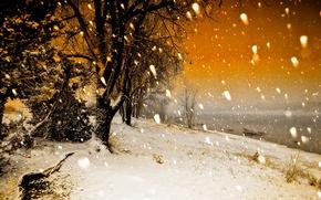 Обои снег, осень, Concho Lake, Arizona