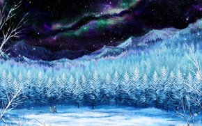 Картинка зима, небо, девушка, звезды, снег, деревья, пейзаж, ночь, следы, природа, северное сияние, аниме, арт, парень, …