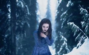 Картинка холод, зима, лес, девушка, макияж, Lichon