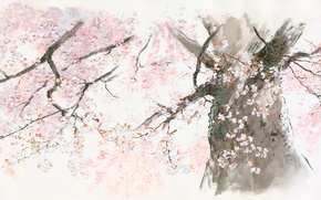 Картинка дерево, Ghibli, сказание о принцессе кагуя, Исао Такахата, kaguya hime no monogatari