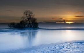 Картинка пейзаж, закат, озеро, дерево