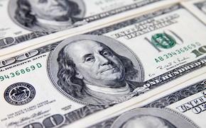 Обои face, money, dollar