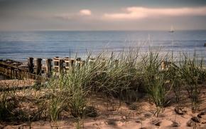 Картинка Beach, Germany, Balticsea