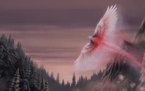 Картинка крылья, арт, Snow phoenix, снежный феникс, art, фэнтези, птица, Oliverford, лес, fantasy