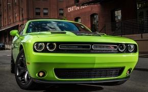 Картинка Dodge, Challenger, 2015
