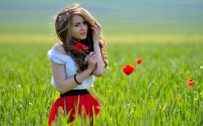 Картинка поле, девушка, цветы, задумчивость, улыбка, ветер, маки, шатенка, очарование