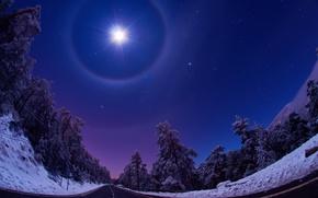 Картинка свет, снег, дорога, Природа, луна, ночь, Зима, небо, звезды, лес