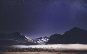 Обои лес, звезды, небо, туман, горы, ночь