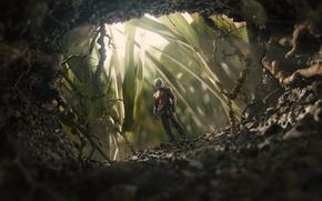 Картинка костюм, супергерой, вход, комикс, Марвел, норка, Ant-man, Человек-муравей