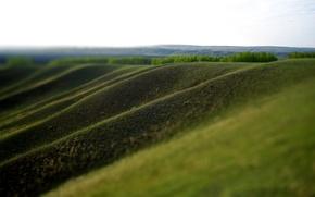 Обои склон долины, зелень