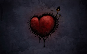 Обои мрак, грибы, Сердце