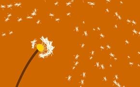 Обои былинки, ветер, одуванчик, цветок