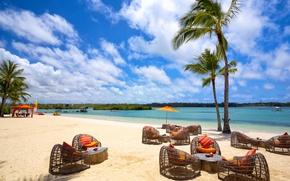 Картинка море, природа, пальмы, остров, курорт