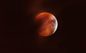 Картинка луна, спутник, затмение, Moon, кровавая