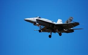 Обои F/A-18 «Hornet», самолёт, небо, «Хорнет», палубный истребитель-бомбардировщик, ВМС США